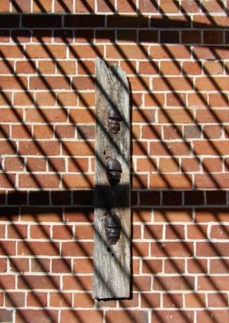 Megan Bottari, 'Post-modern Tokenism IV: Rooted', lost wax cast crystal, aged wood