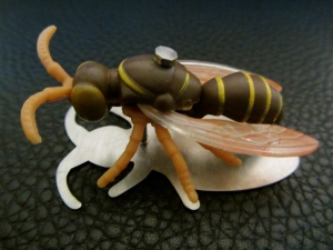 Ginger Bottari, Waspish brooch