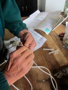 wiring the Yorkie